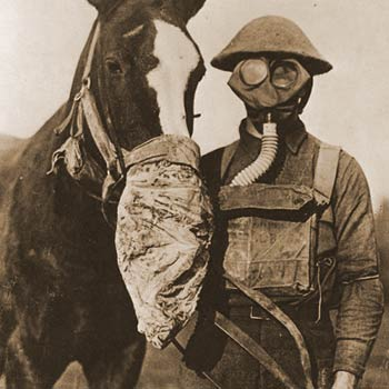 Horse Heroes - 1.5 million American Equines serve in WWI. See the new web site at ww1cc.org/horses