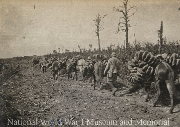 French soldiers lead horses loaded with bread Verdun wwimus