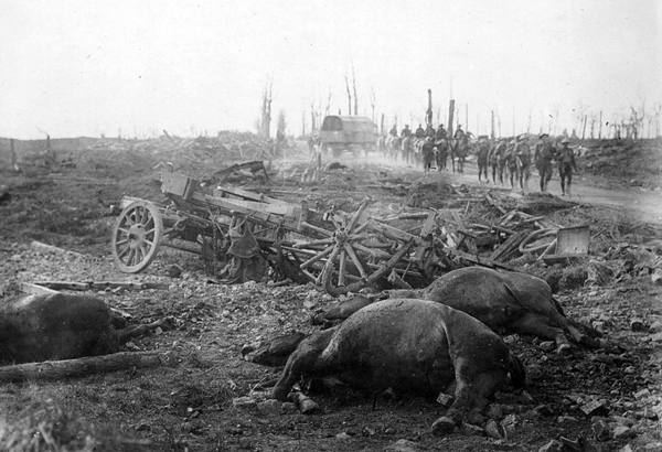 UNK dead horses after Ypres Nat Lib of New Zealand
