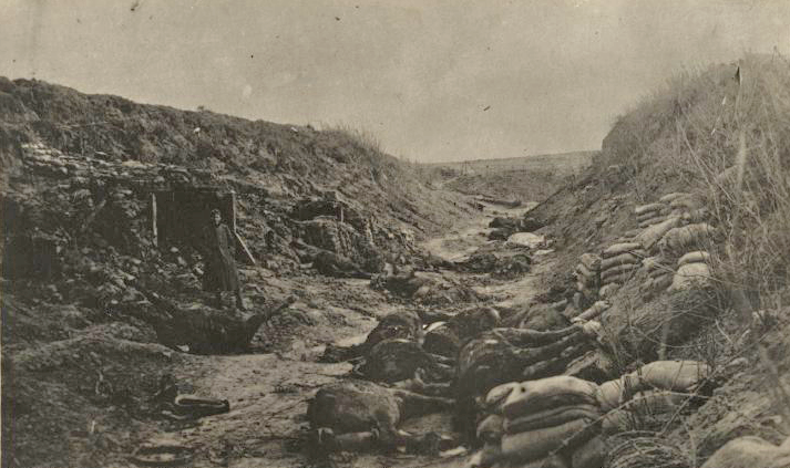 US dead horses in trench wwimus