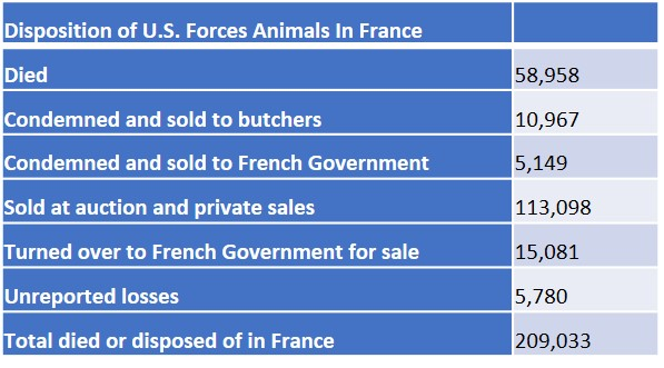 5disposition of US Animals in France