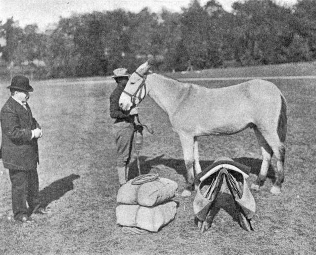 Fig 6 Henry Daly instructing packing