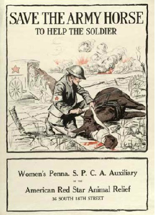 PA Womens SPCA Red Star poster