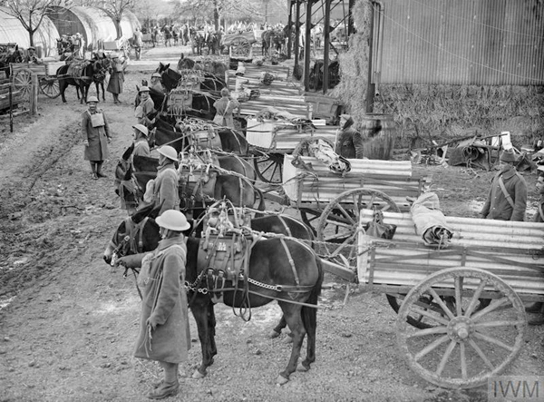 BRIT mules with wagons next to forage shed for web