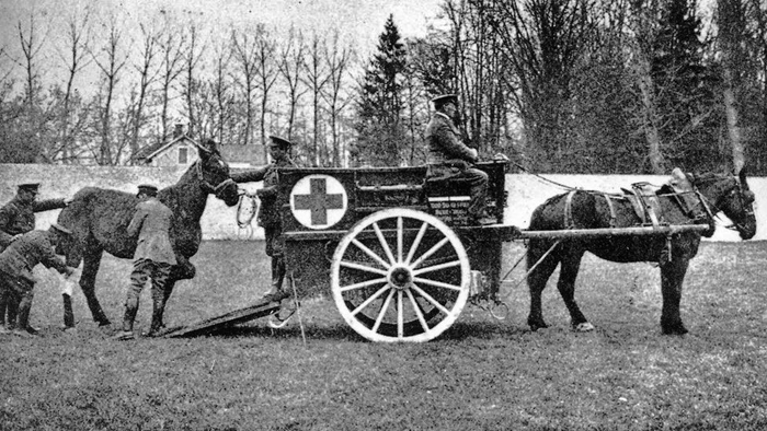 horse ambulance with horse being loaded