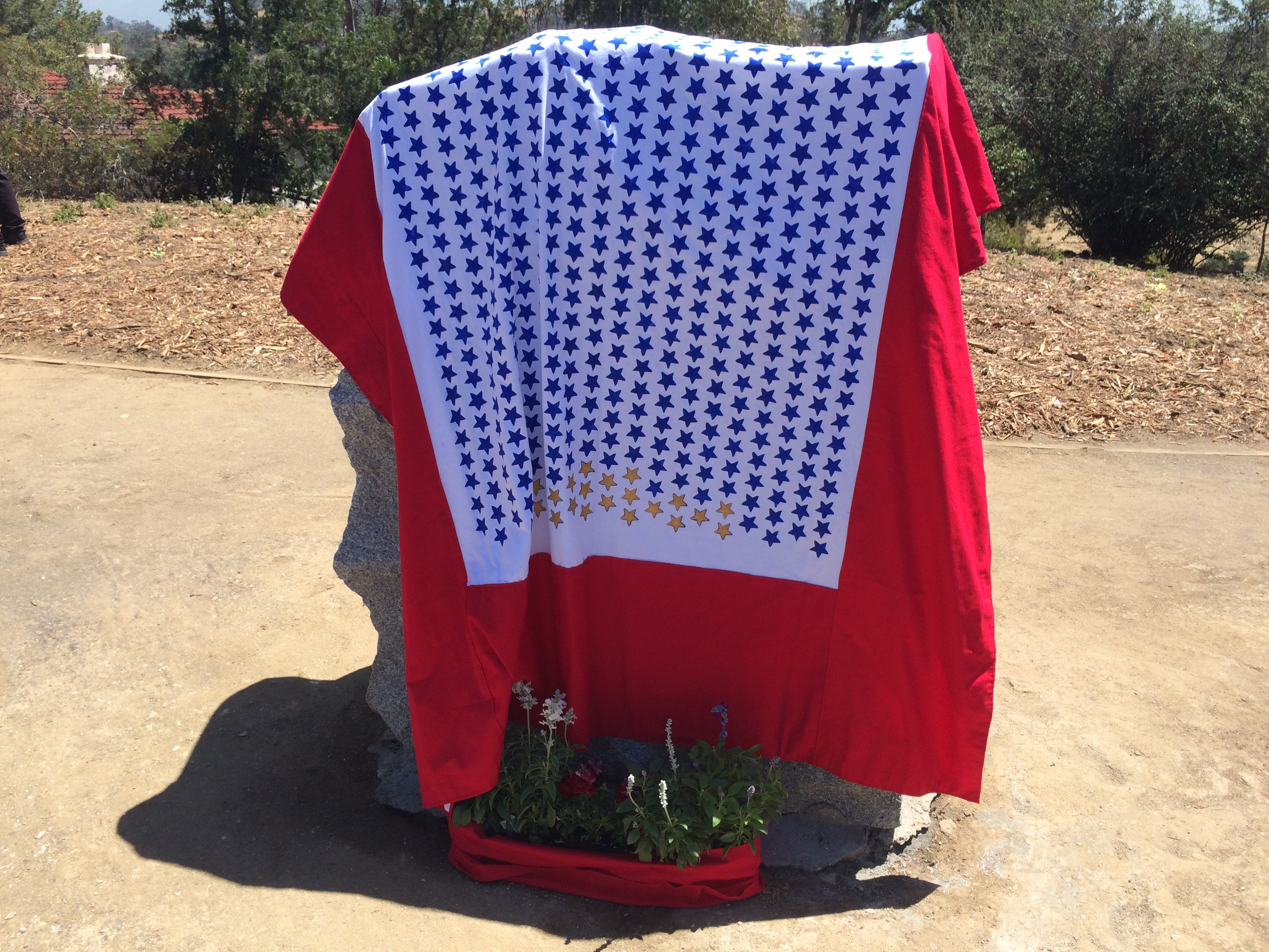 flag day at victory memorial grove 2017 drapped service flag