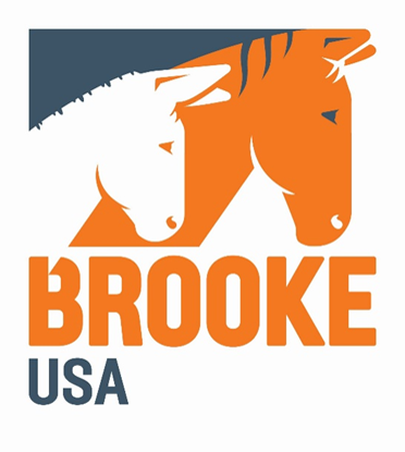 Brooke USA logo