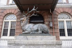 WWI Elk Memorial - New Brunswick