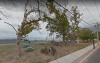 The Memorial Trees at Beach Park