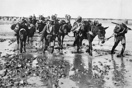 British and Indian troops in Mesopotamia, 1916.