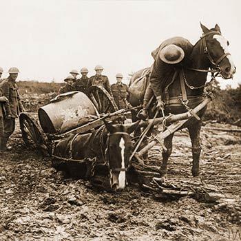 Ww1 Centennial News Episode 31 8022017 World War I Centennial