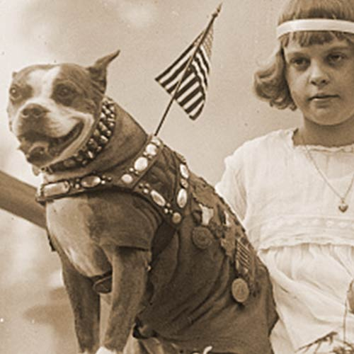 Sgt. Stubby popular with kids today and 100 years ago!