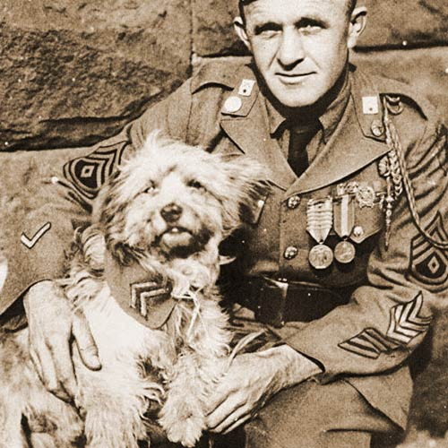 Rags was a mixed breed terrier who served with the U.S. 1st Infantry Division in WW1